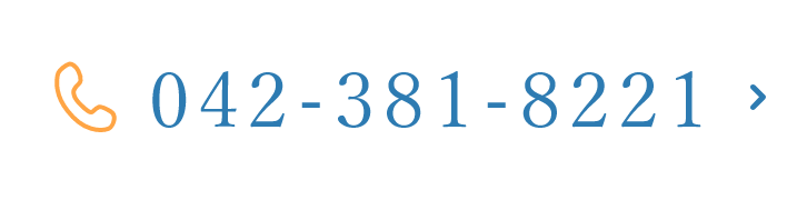 042-381-8221
